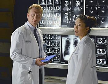 Grey's Anatomy - Thérapies de couples