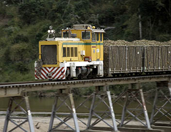 MegaTrains - Australie : le train de canne à sucre